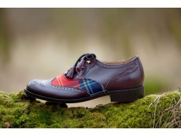 Shoe on moss log